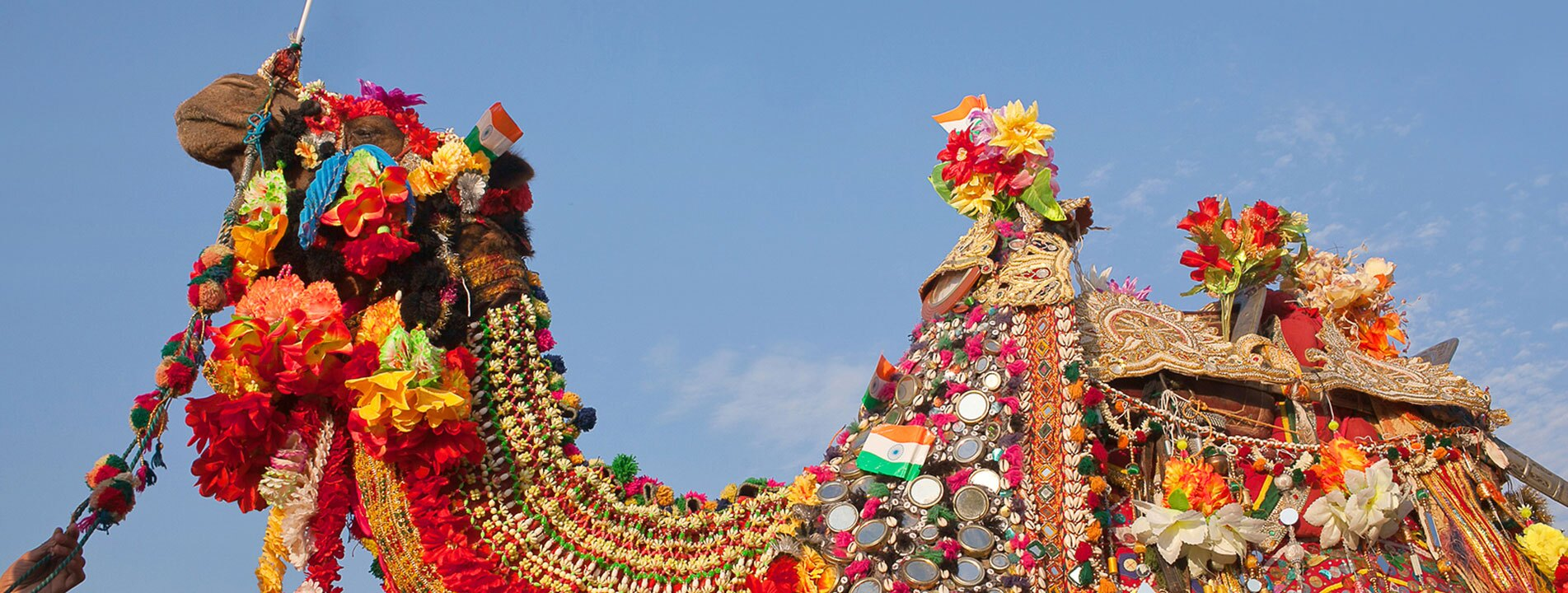 10-Day Royal Rajasthan and Camel Festival Tour