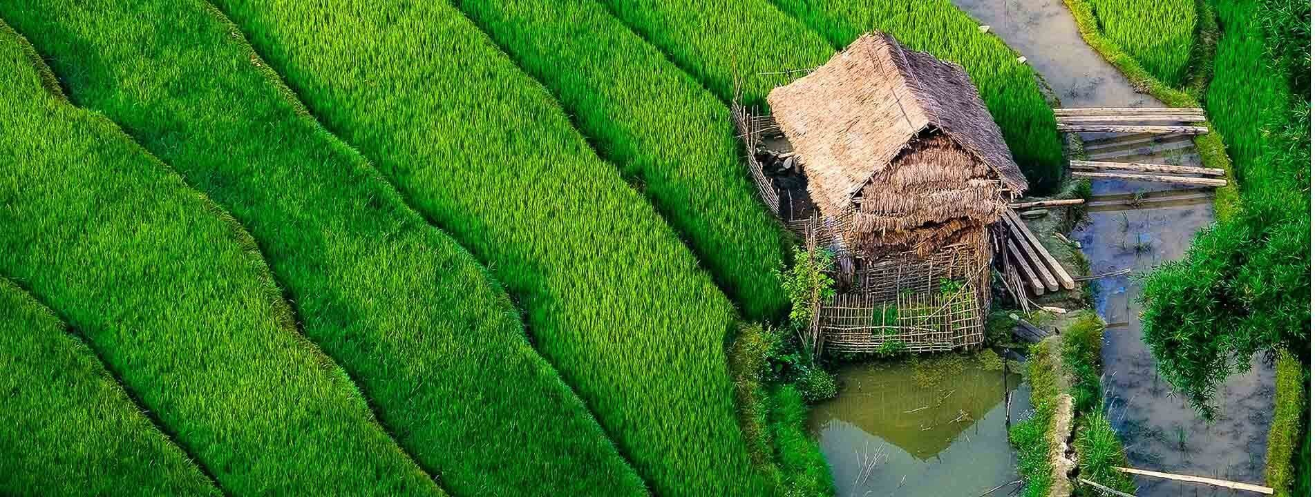 13-Day Vietnam Classic Tour with Sapa