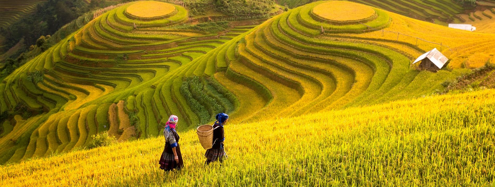 5-Day Northern Vietnam Exploration with Sapa