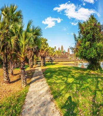 Angkor Wat with trees