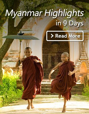 Myanmar Novices