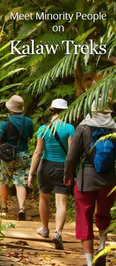 Travelers Trekking